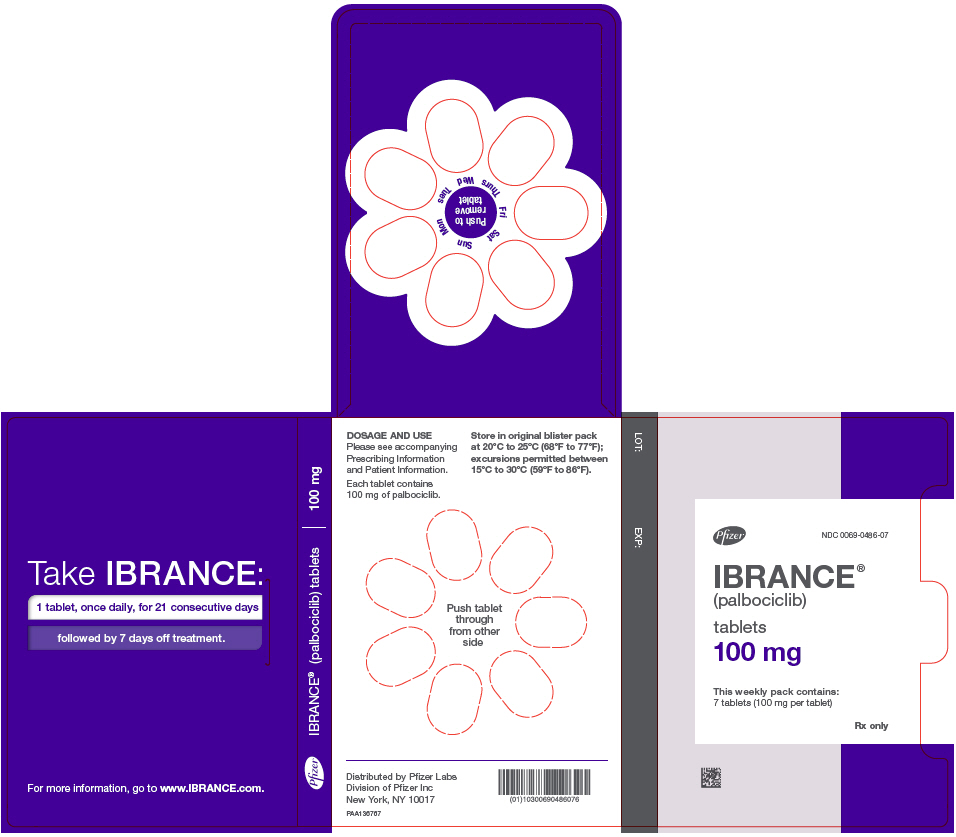 PRINCIPAL DISPLAY PANEL - 100 mg Tablet Dose Pack